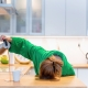 Can joint pain make you tired | Flarin